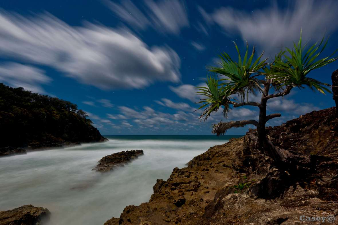 moonlight, moonlit sea, long exposure, panadanas streaking skies clouds stradbroke island