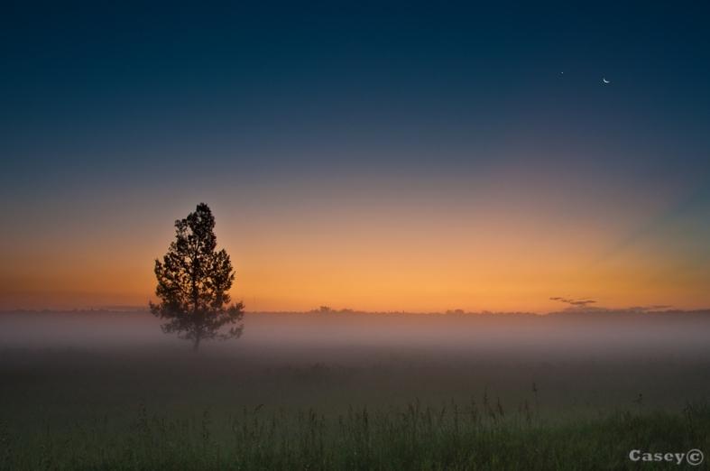 simple pre dawn glow