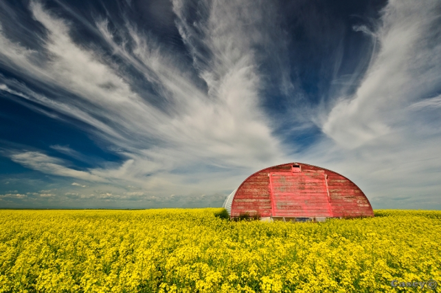 primary colours, red barn